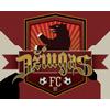 FK Dziugas Telsiai