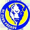 HC ZUBR Prerov
