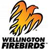 惠灵顿Firebirds