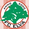FC埃尔瓦