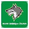 MSHK Zilina