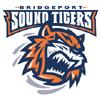 BRI Sound Tigers