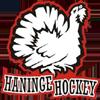 Haninge Anchors HC