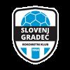 RK Slovenj Gradec 2011