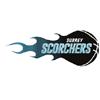 萨里 Scorchers